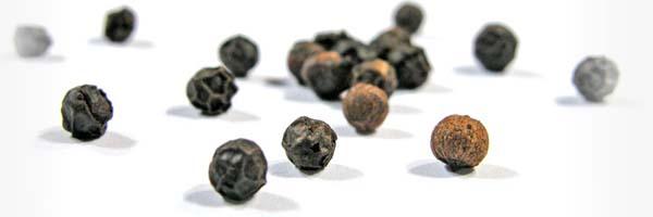 gastrogurman - zacimbe ozka za ekosara libereko