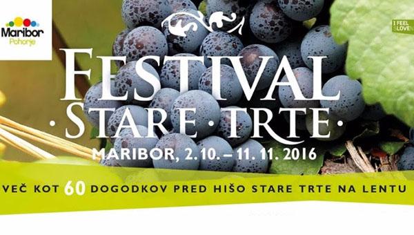 16. Festival Stare trte – program festivala