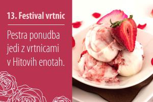 13. Festival vrtnic